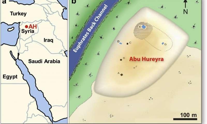 Abu Hureyra