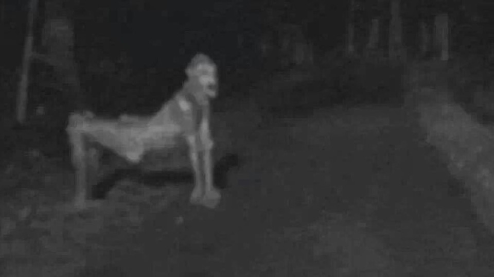Skinwalker scare new mexico