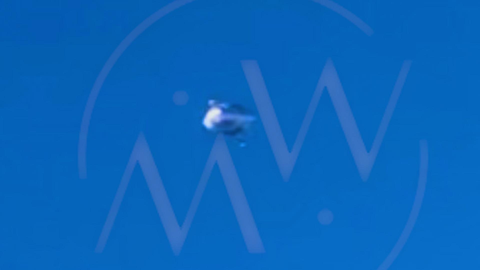 UFO-PICS-METALLIC.jpg